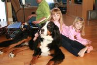 Zoothérapie-besoin particulier-Photo