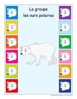 identification groupe interactif-Ours polaires