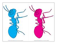 jeu des fourmis
