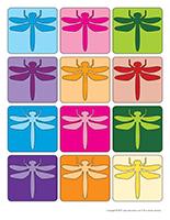 libellules multicolores