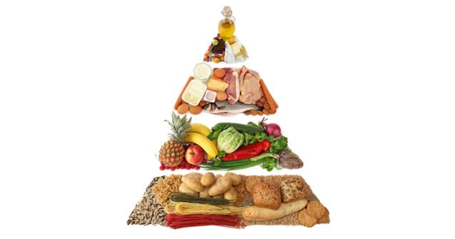 Votre Menu Est Il Conforme Au Nouveau Guide Alimentaire Canadien Educatout