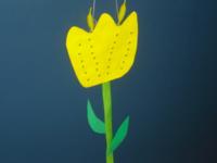 tulipe jaune-1