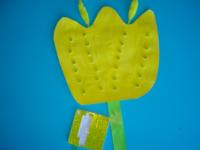 tulipe jaune-6