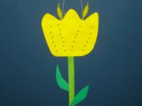 tulipe jaune-9